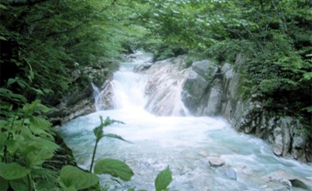 夢占いで未来を予測!『川の夢』絶対に気を付ける9つの事