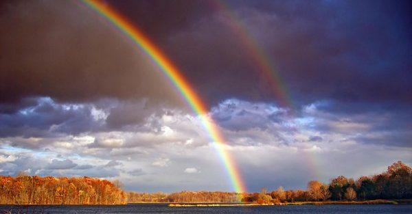 夢占い『虹』が登場した時、夢が暗示する7つの事