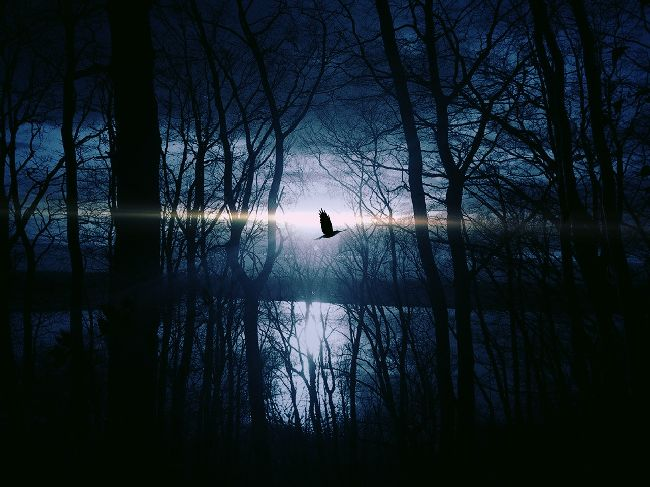東京事変『入水願い』が好きな人にオススメの深い暗い7曲