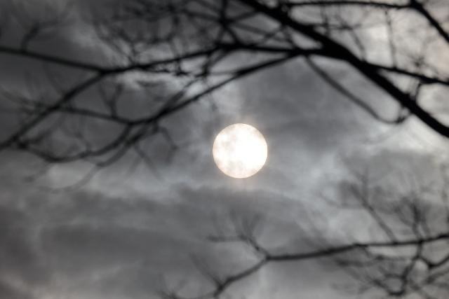 夢占いで幽霊はどんな意味?吉凶を分ける7つのポイント