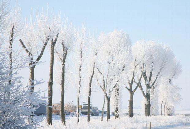 夢占い、真っ白な雪があらわす7つの明るい未来