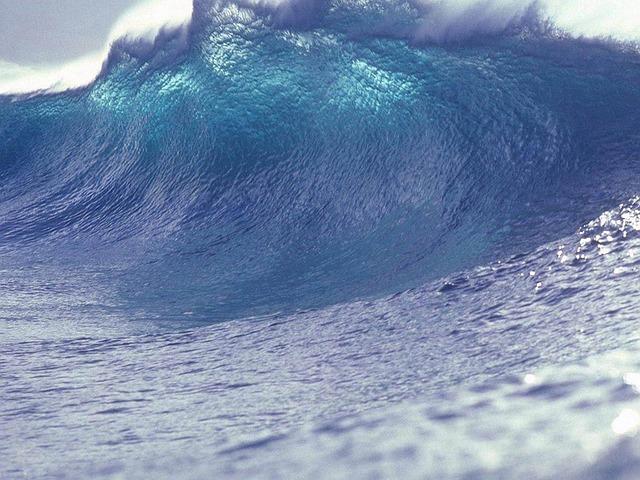 【夢占い】津波の夢があなたへ伝えるメッセージ
