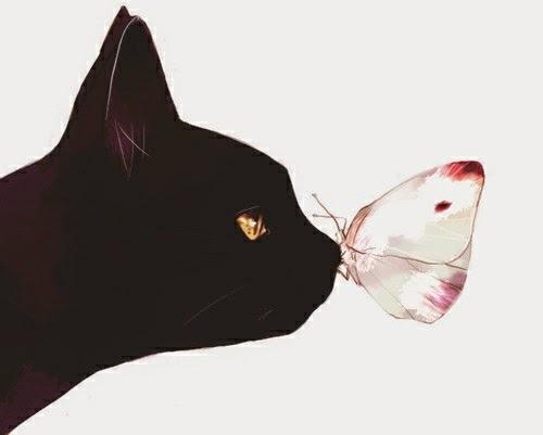 黒猫と蝶々の画像