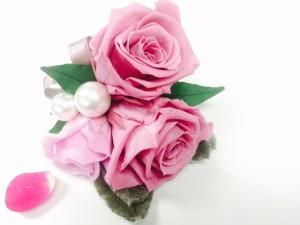 ピンクのバラ全