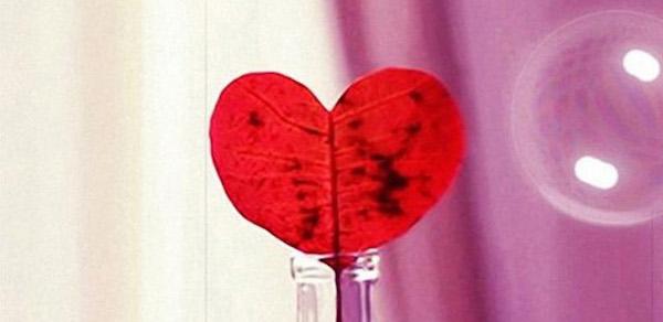 【復縁】願いが叶う待ち受け:赤いハート型の葉っぱ