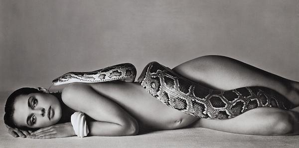 夢占い『蛇』の夢に隠されたあなたの深層心理!