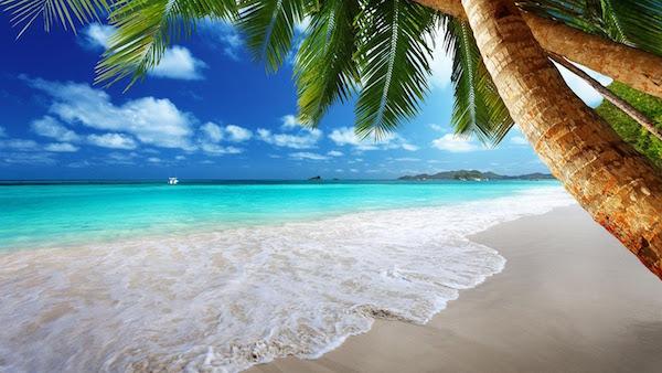 海の夢を見た後に気をつけてほしい6つの事